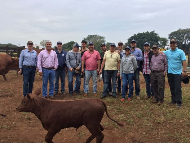 Bela Vista Senepol na agenda  de pecuaristas da Colômbia